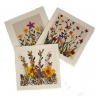 Flower cards Meadow